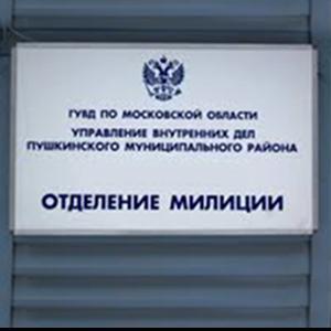 Отделения полиции Пижанки